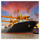 expertise Admiralty and Shipping
